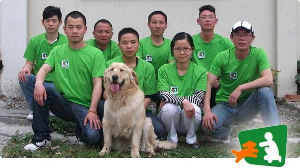 Buddydog Training Boarding