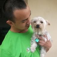 http://www.buddydog.net/wp-content/uploads/2013/05/Bella-1-wpcf_190x190.jpg