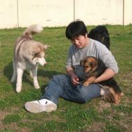 http://www.buddydog.net/wp-content/uploads/2013/05/Zoe-4-wpcf_190x190.jpg