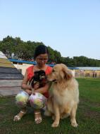 http://www.buddydog.net/wp-content/uploads/Abby-3-wpcf_142x190.jpg