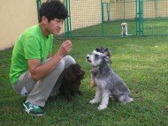 http://www.buddydog.net/wp-content/uploads/Genki-4--wpcf_190x143.jpg